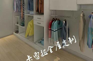 衣柜系列17